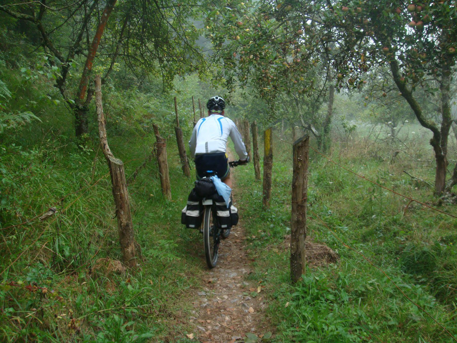 Bicihome Camino Tierra