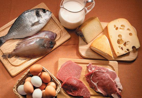 Bicihome alimentos sin carbohidratos 2