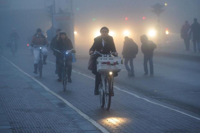 Bicihome Amsterdam casco